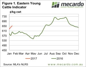 Demand driving cattle prices higher 5