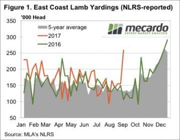 No rain but lambs flooding NSW yards 3