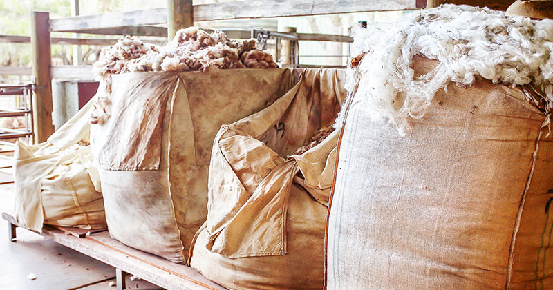 No good news for the wool market 7